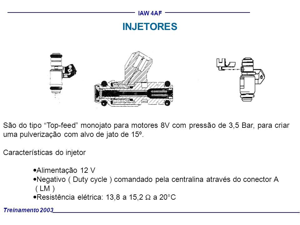 Treinamento 2003 IAW 4AF São do tipo Top-feed monojato para motores 8V com pressão de 3,5 Bar, para criar uma pulverização com alvo de jato de 15º. Ca