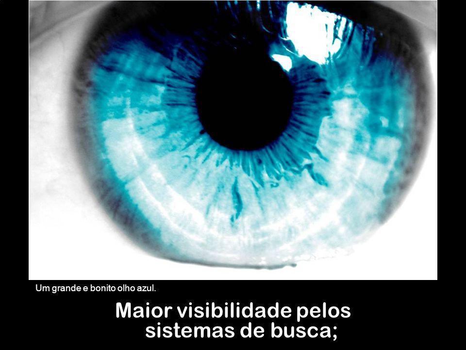 Maior visibilidade pelos sistemas de busca; Um grande e bonito olho azul.