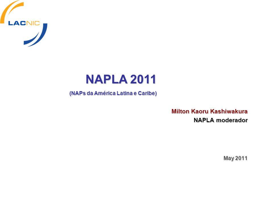 Milton Kaoru Kashiwakura NAPLA moderador May 2011 NAPLA 2011 (NAPs da América Latina e Caribe)
