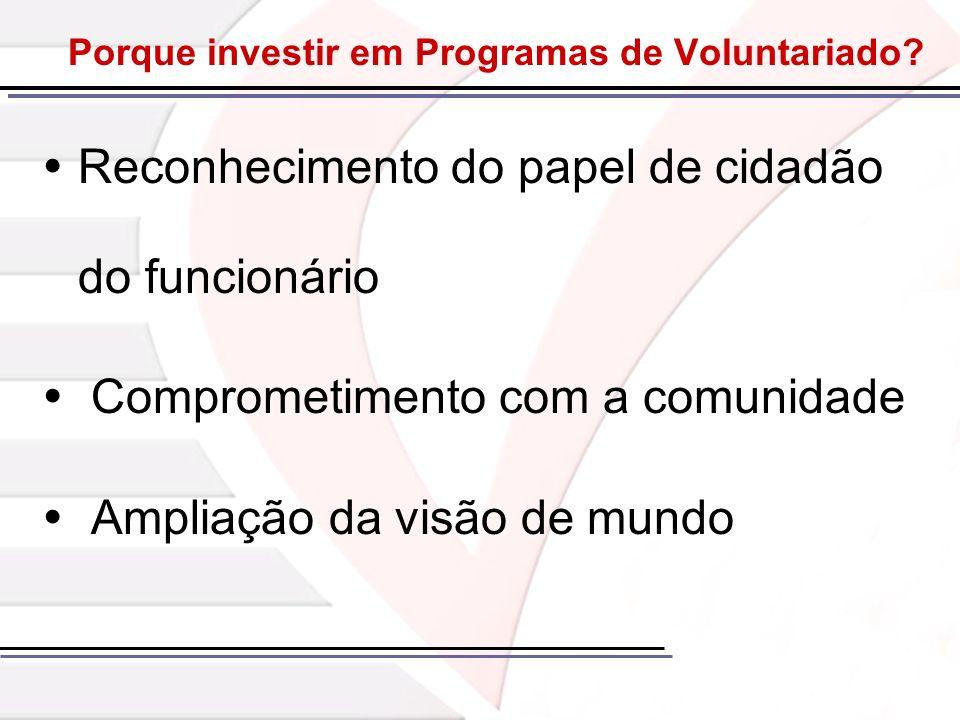Porque investir em Programas de Voluntariado? Reconhecimento do papel de cidadão do funcionário Comprometimento com a comunidade Ampliação da visão de