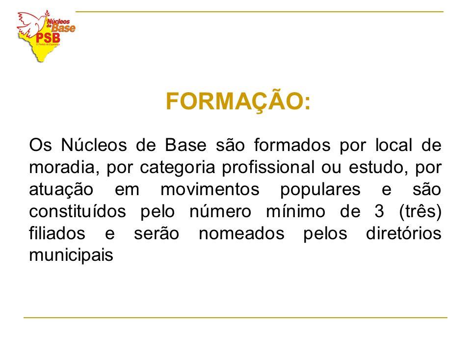 FORMAÇÃO: Os Núcleos de Base são formados por local de moradia, por categoria profissional ou estudo, por atuação em movimentos populares e são consti