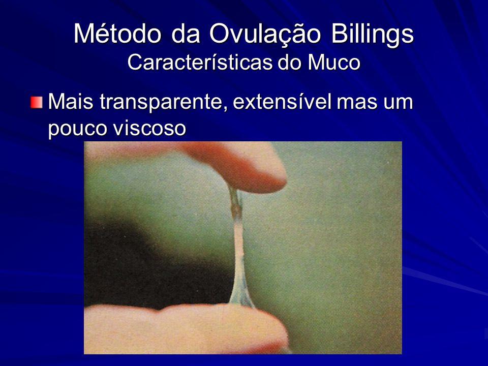 Método da Ovulação Billings Características do Muco Mais transparente, extensível mas um pouco viscoso