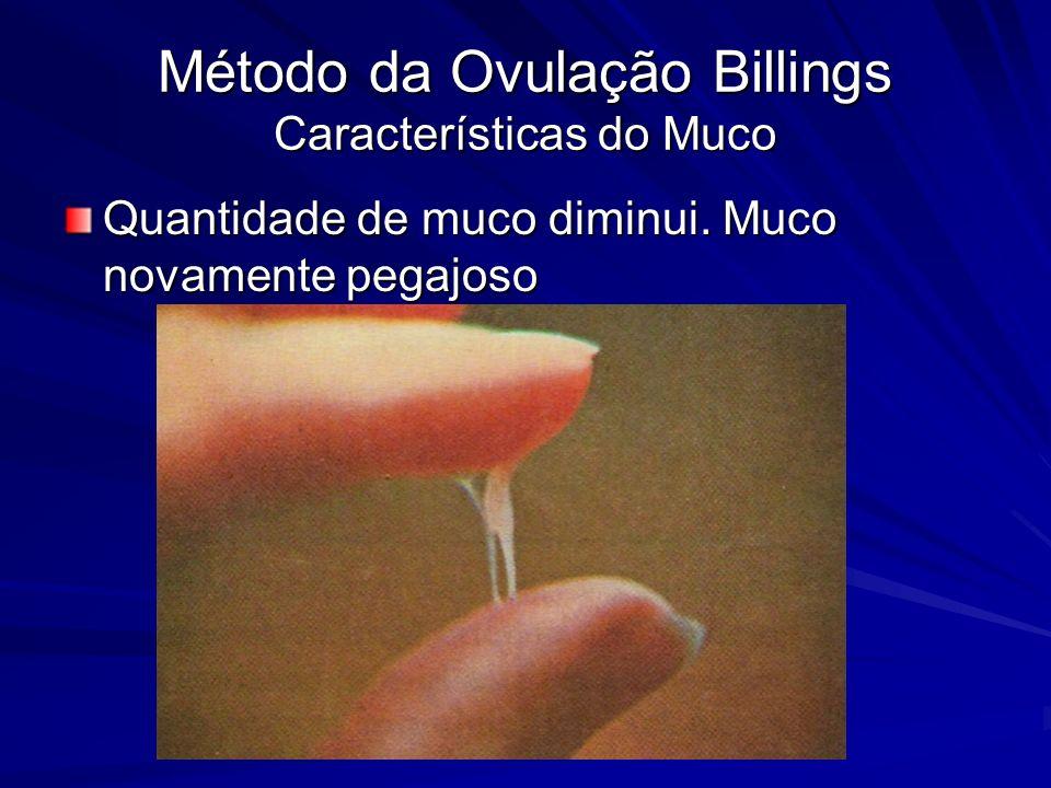 Método da Ovulação Billings Características do Muco Quantidade de muco diminui. Muco novamente pegajoso