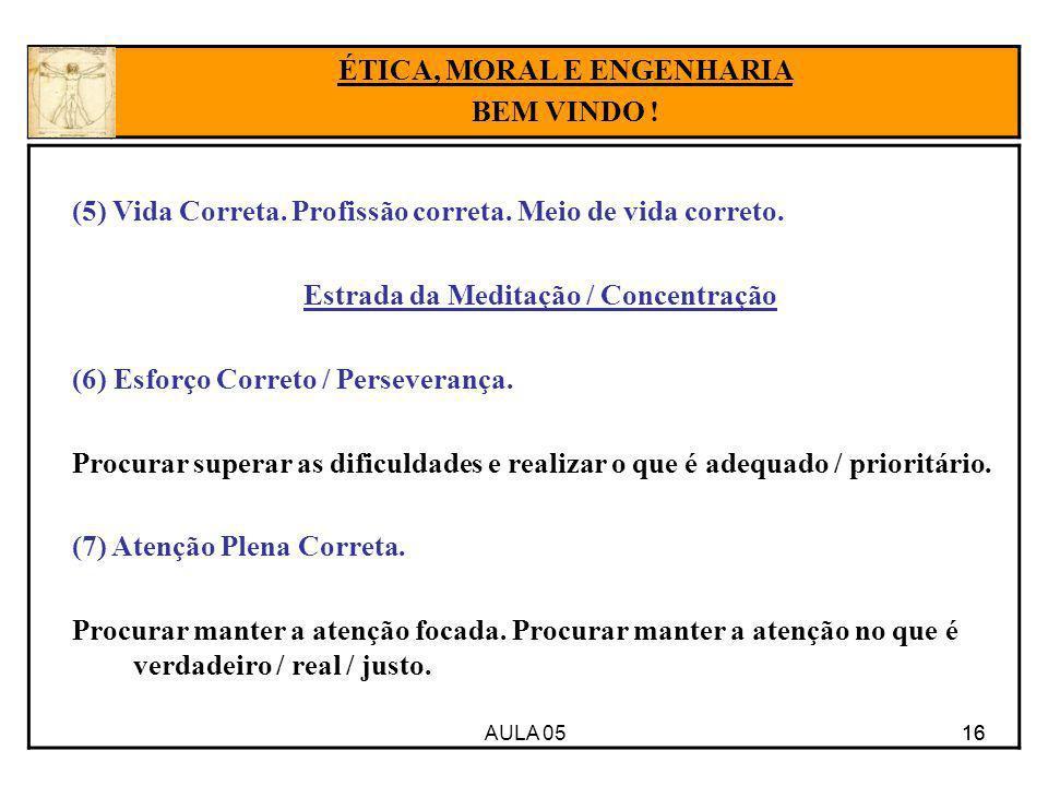 AULA 05 16 (5) Vida Correta. Profissão correta. Meio de vida correto. Estrada da Meditação / Concentração (6) Esforço Correto / Perseverança. Procurar