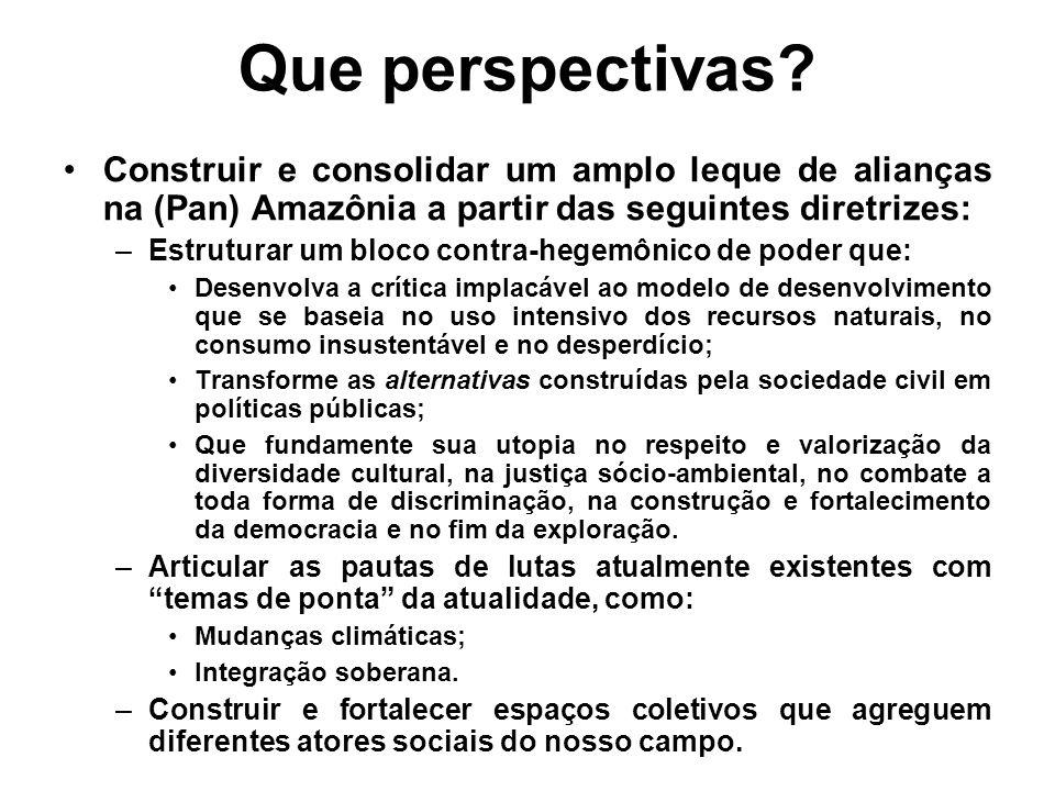 Que perspectivas? Construir e consolidar um amplo leque de alianças na (Pan) Amazônia a partir das seguintes diretrizes: –Estruturar um bloco contra-h