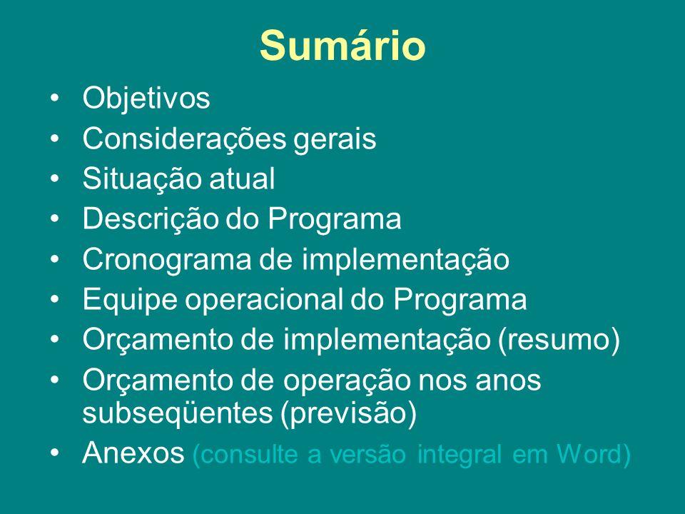 Sumário Objetivos Considerações gerais Situação atual Descrição do Programa Cronograma de implementação Equipe operacional do Programa Orçamento de im