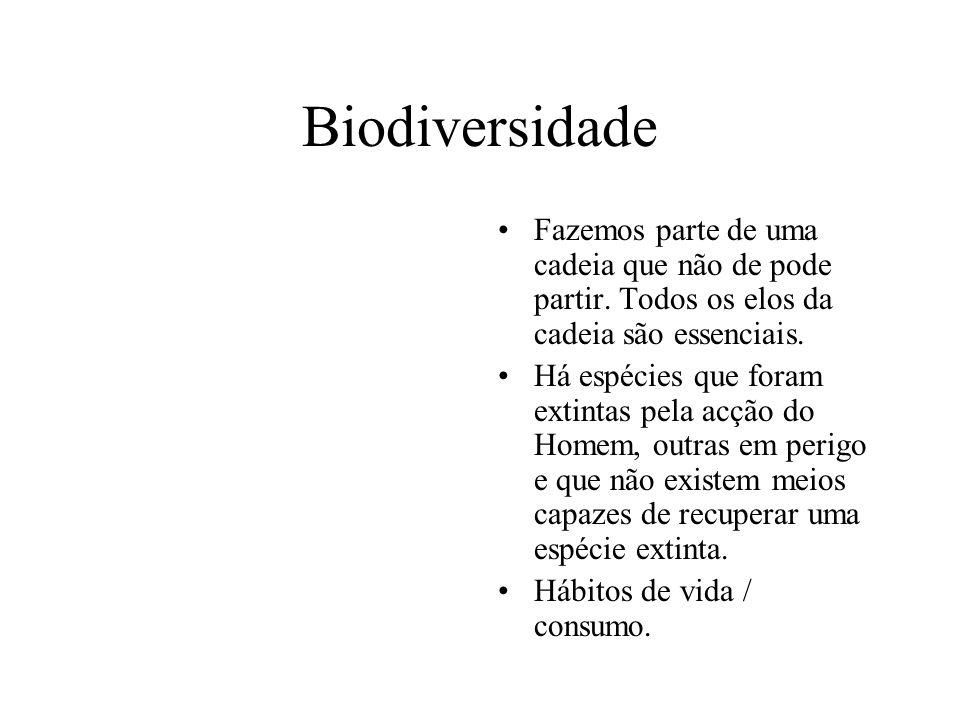 Biodiversidade Fazemos parte de uma cadeia que não de pode partir. Todos os elos da cadeia são essenciais. Há espécies que foram extintas pela acção d