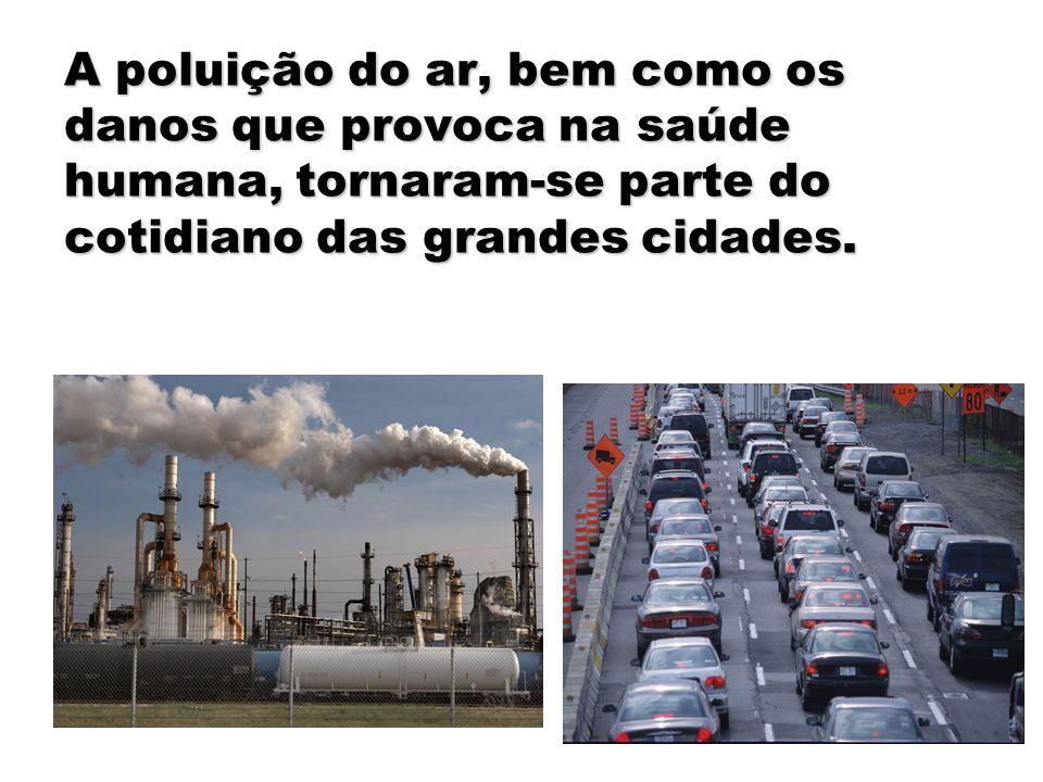 A poluição do ar, bem como os danos que provoca na saúde humana, tornaram-se parte do cotidiano das grandes cidades.