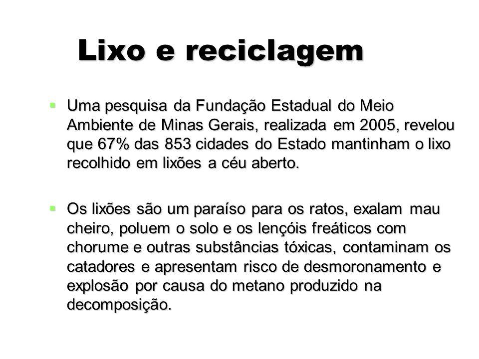 Lixo e reciclagem Lixo e reciclagem Uma pesquisa da Fundação Estadual do Meio Ambiente de Minas Gerais, realizada em 2005, revelou que 67% das 853 cid