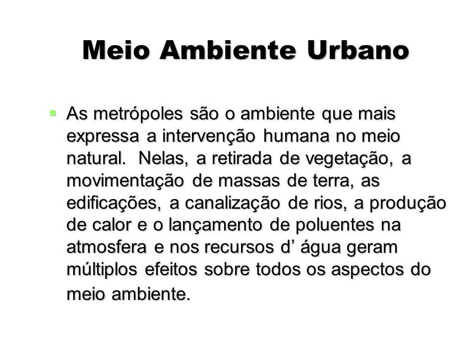 Meio Ambiente Urbano Meio Ambiente Urbano As metrópoles são o ambiente que mais expressa a intervenção humana no meio natural. Nelas, a retirada de ve
