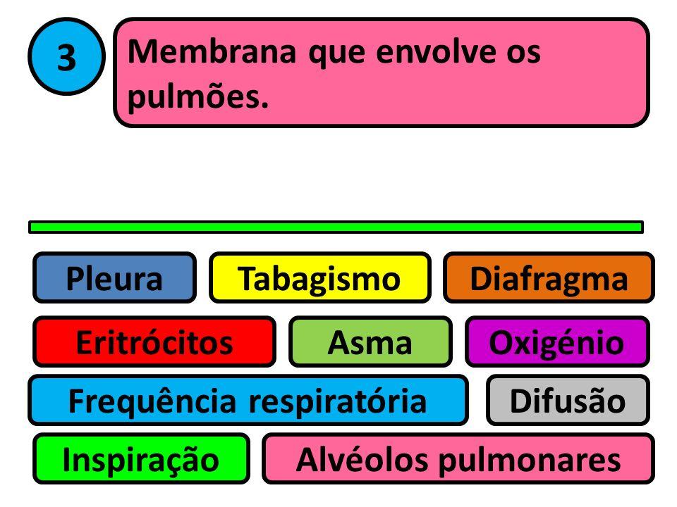 Pleura Eritrócitos Tabagismo Asma Frequência respiratória Inspiração Difusão Oxigénio Alvéolos pulmonares Diafragma 2 Doença crónica que resulta da in