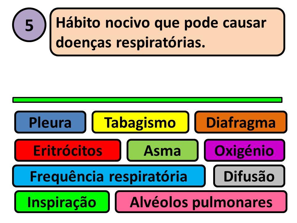 Pleura Eritrócitos Tabagismo Asma Frequência respiratória Inspiração Difusão Oxigénio Alvéolos pulmonares Diafragma 4 Gás atmosférico fundamental para