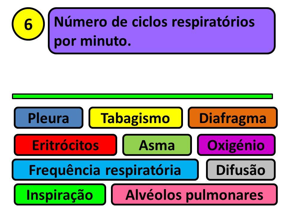Pleura Eritrócitos Tabagismo Asma Frequência respiratória Inspiração Difusão Oxigénio Alvéolos pulmonares Diafragma 5 Hábito nocivo que pode causar do