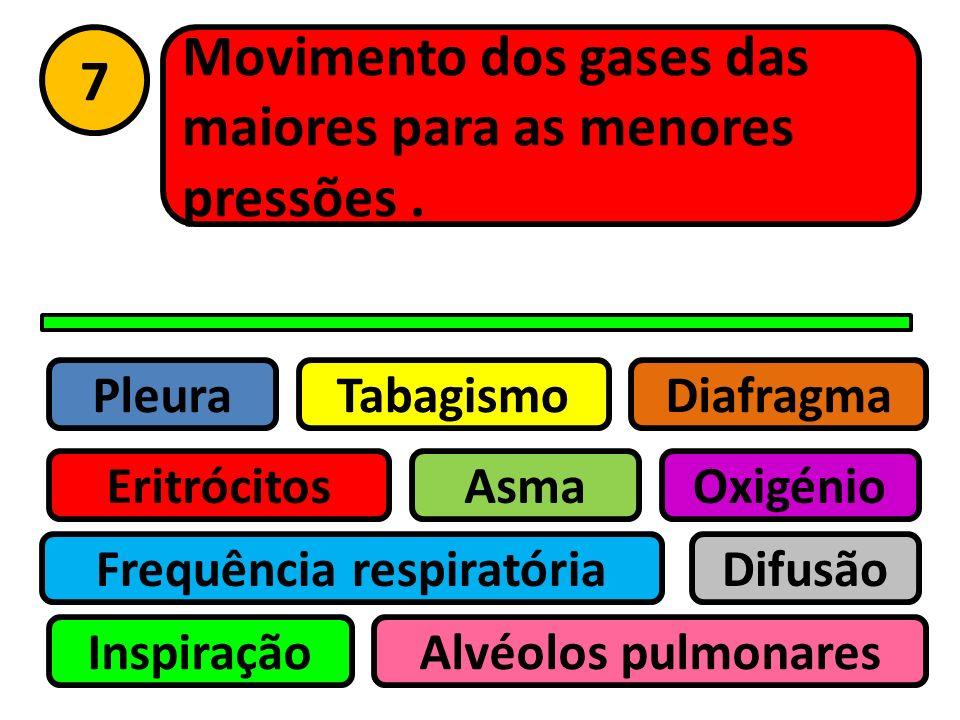 Pleura Eritrócitos Tabagismo Asma Frequência respiratória Inspiração Difusão Oxigénio Alvéolos pulmonares Diafragma 6 Número de ciclos respiratórios p
