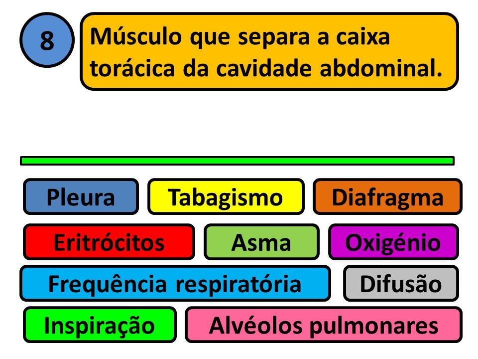 Pleura Eritrócitos Tabagismo Asma Frequência respiratória Inspiração Difusão Oxigénio Alvéolos pulmonares Diafragma 7 Movimento dos gases das maiores