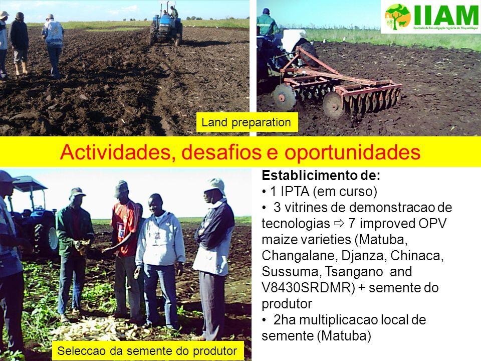 Establicimento de: 1 IPTA (em curso) 3 vitrines de demonstracao de tecnologias 7 improved OPV maize varieties (Matuba, Changalane, Djanza, Chinaca, Su