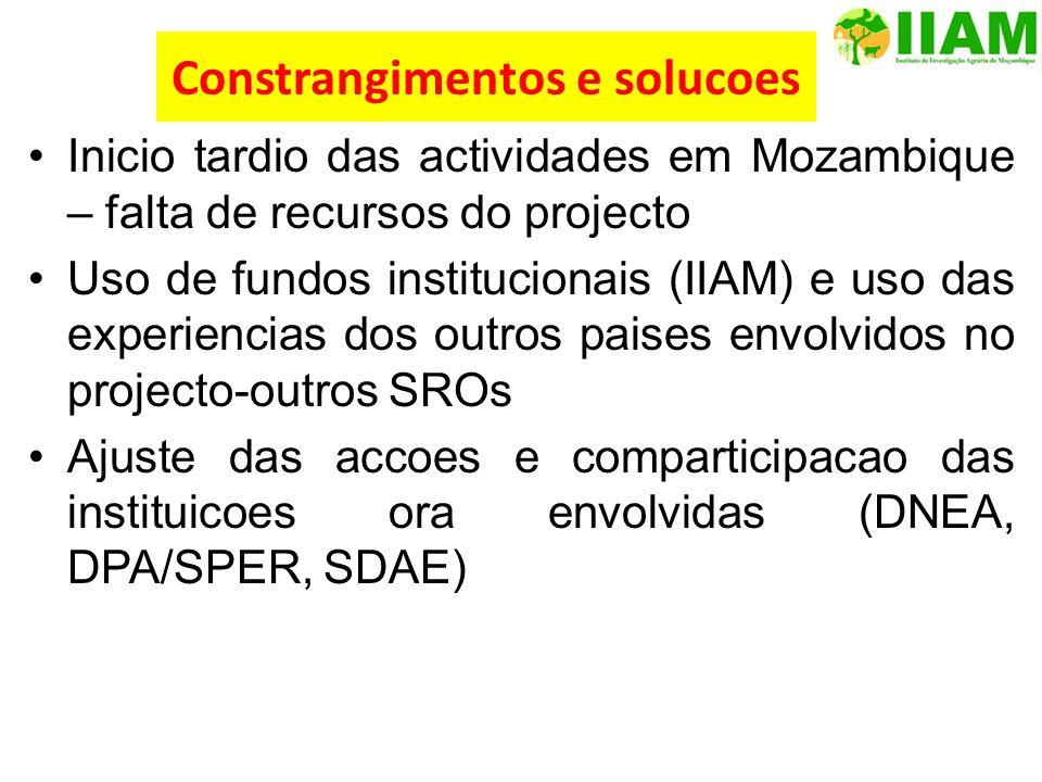 Constrangimentos e solucoes Inicio tardio das actividades em Mozambique – falta de recursos do projecto Uso de fundos institucionais (IIAM) e uso das