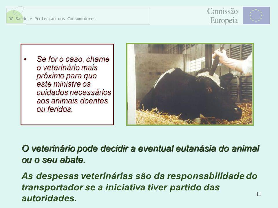 11 Se for o caso, chame o veterinário mais próximo para que este ministre os cuidados necessários aos animais doentes ou feridos.Se for o caso, chame