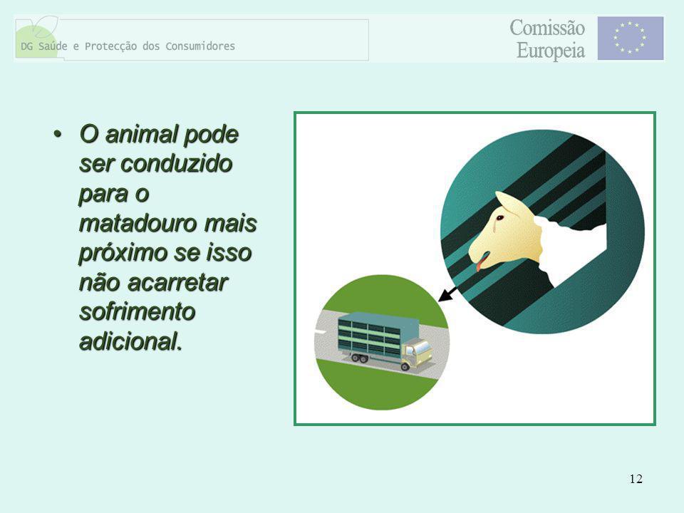 12 O animal pode ser conduzido para o matadouro mais próximo se isso não acarretar sofrimento adicional.O animal pode ser conduzido para o matadouro m