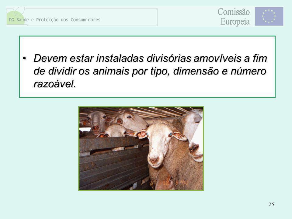 25 Devem estar instaladas divisórias amovíveis a fim de dividir os animais por tipo, dimensão e número razoável.Devem estar instaladas divisórias amov