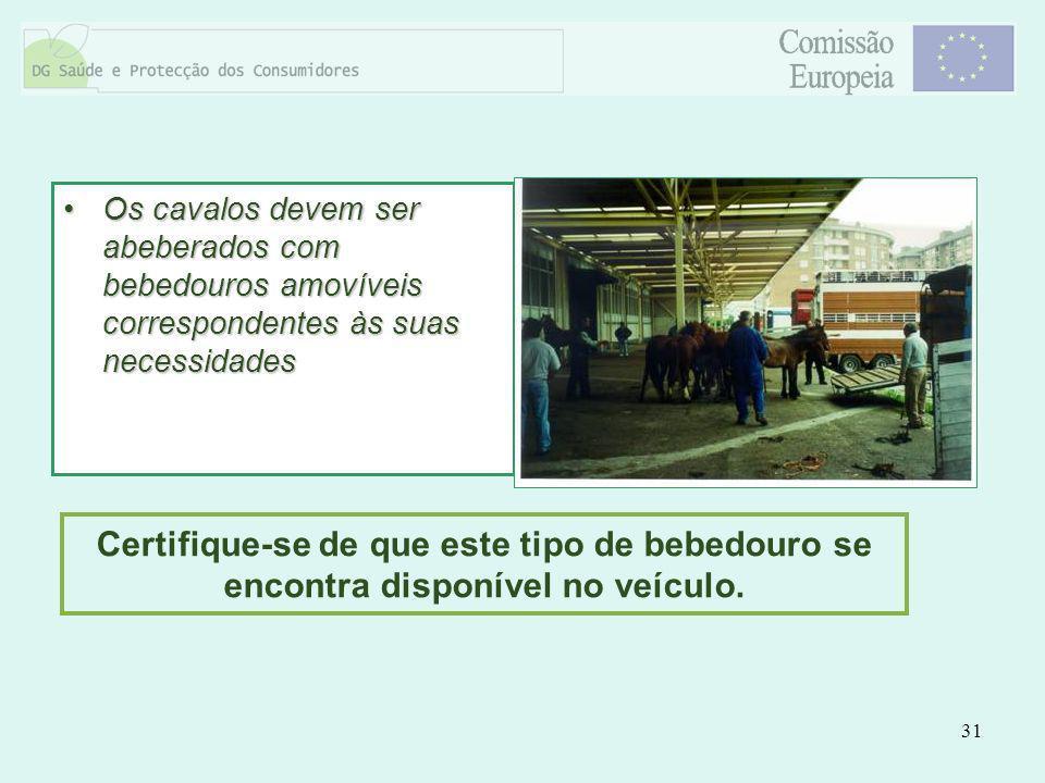 31 Os cavalos devem ser abeberados com bebedouros amovíveis correspondentes às suas necessidadesOs cavalos devem ser abeberados com bebedouros amovíve
