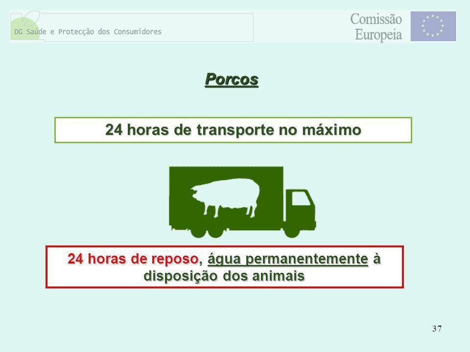 37 Porcos 24 horas de transporte no máximo 24 horas de reposo, água permanentemente à disposição dos animais