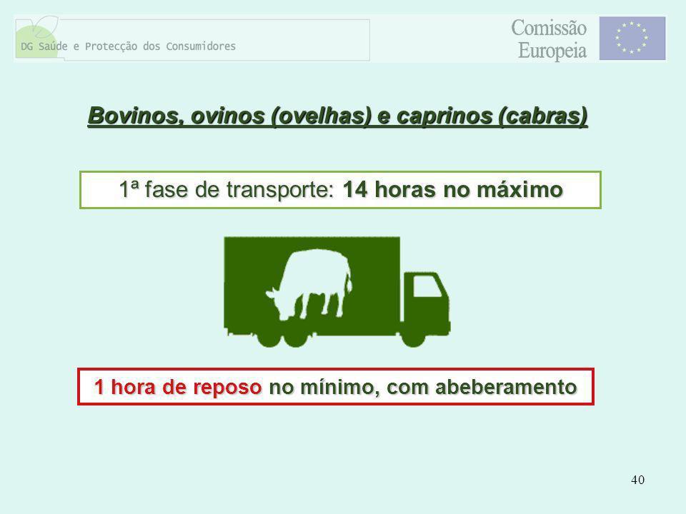 40 Bovinos, ovinos (ovelhas) e caprinos (cabras) 1ª fase de transporte: 14 horas no máximo 1 hora de reposo no mínimo, com abeberamento