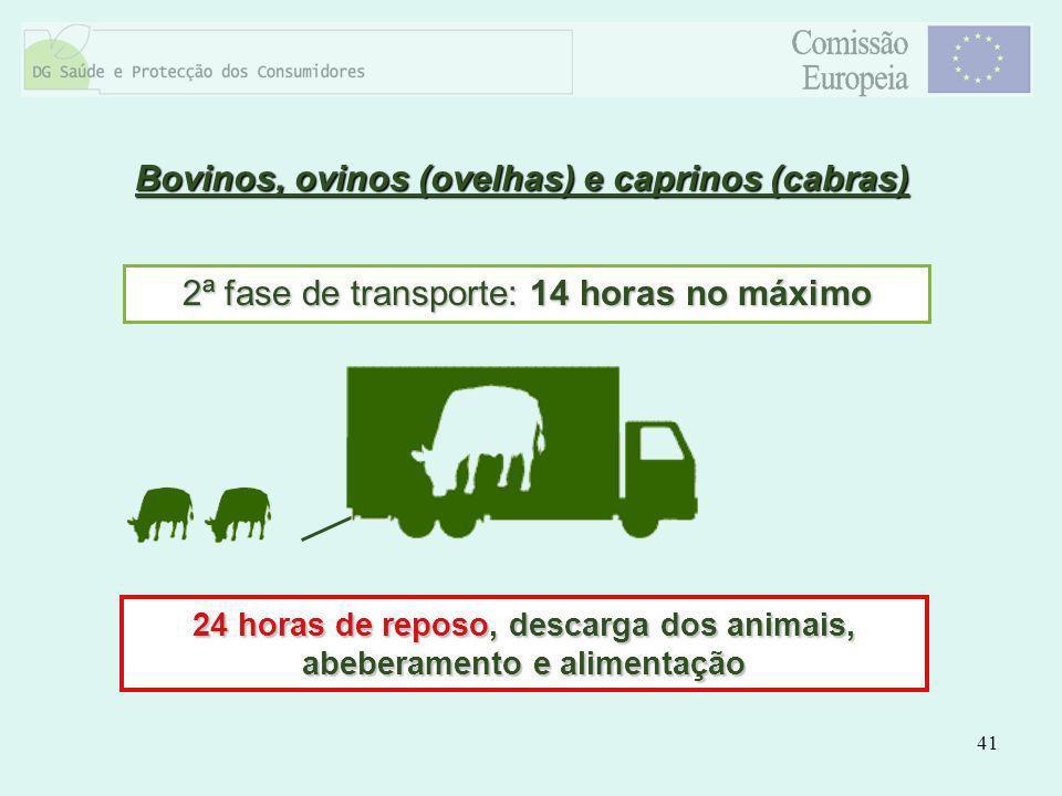 41 2ª fase de transporte: 14 horas no máximo 24 horas de reposo, descarga dos animais, abeberamento e alimentação Bovinos, ovinos (ovelhas) e caprinos