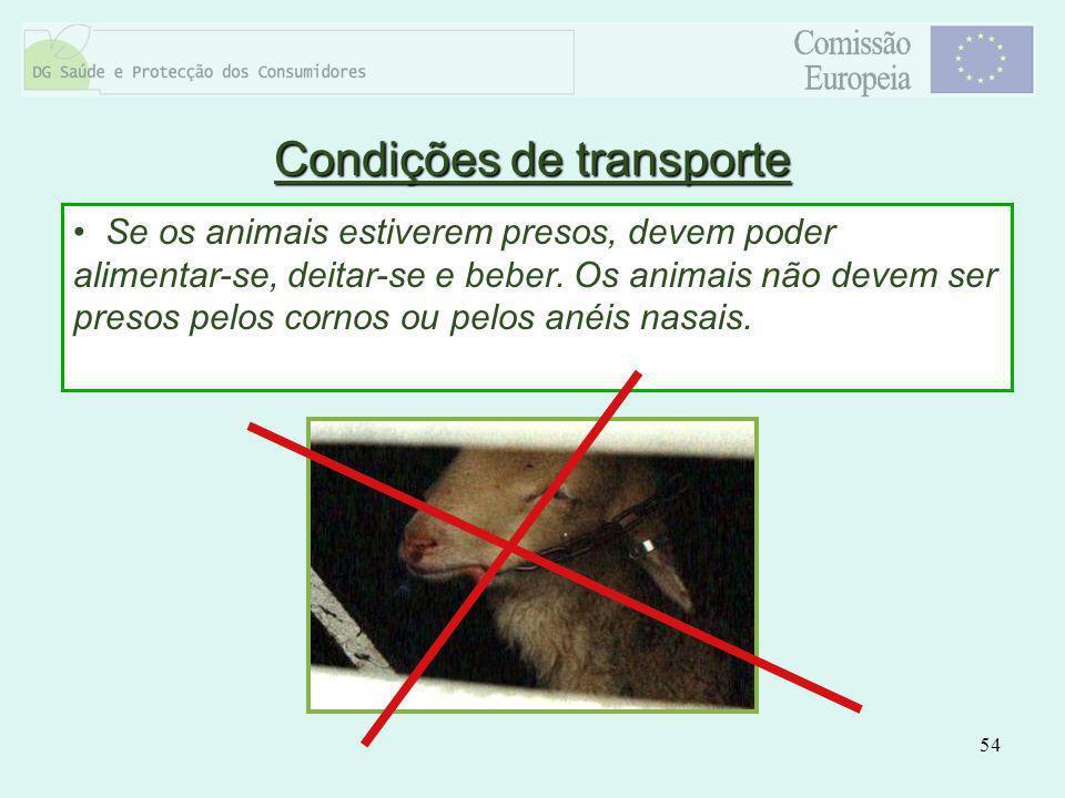 54 Se os animais estiverem presos, devem poder alimentar-se, deitar-se e beber. Os animais não devem ser presos pelos cornos ou pelos anéis nasais. Co