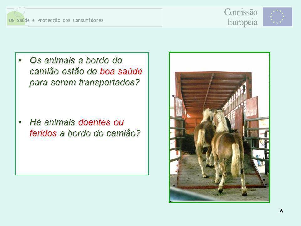 6 Os animais a bordo do camião estão de boa saúde para serem transportados?Os animais a bordo do camião estão de boa saúde para serem transportados? H
