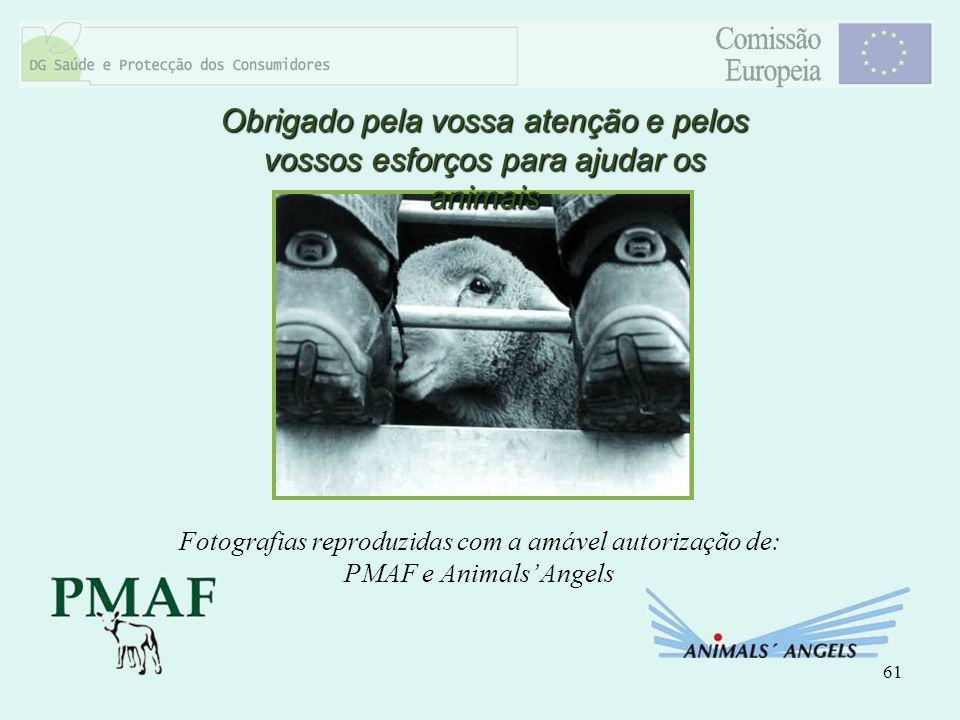 61 Obrigado pela vossa atenção e pelos vossos esforços para ajudar os animais Fotografias reproduzidas com a amável autorização de: PMAF e Animals Ang