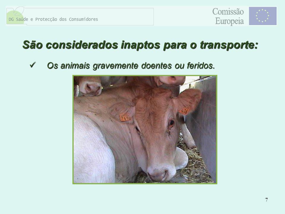 7 Os animais gravemente doentes ou feridos. Os animais gravemente doentes ou feridos. São considerados inaptos para o transporte: