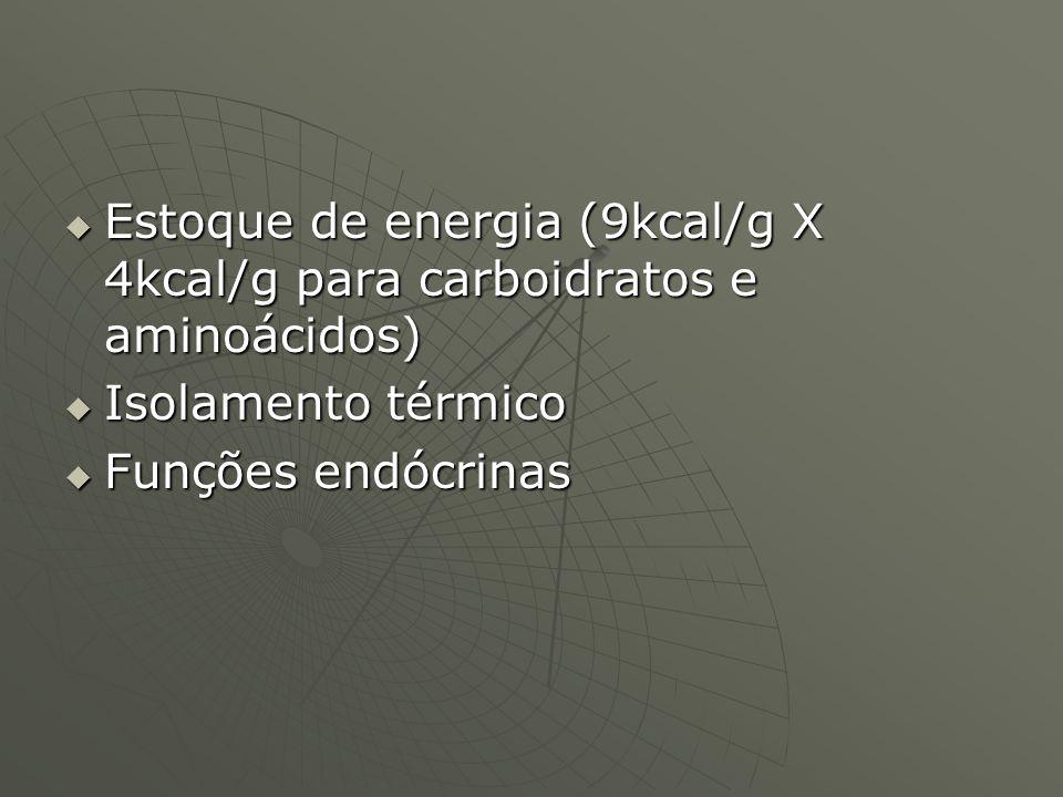 Estoque de energia (9kcal/g X 4kcal/g para carboidratos e aminoácidos) Estoque de energia (9kcal/g X 4kcal/g para carboidratos e aminoácidos) Isolamen
