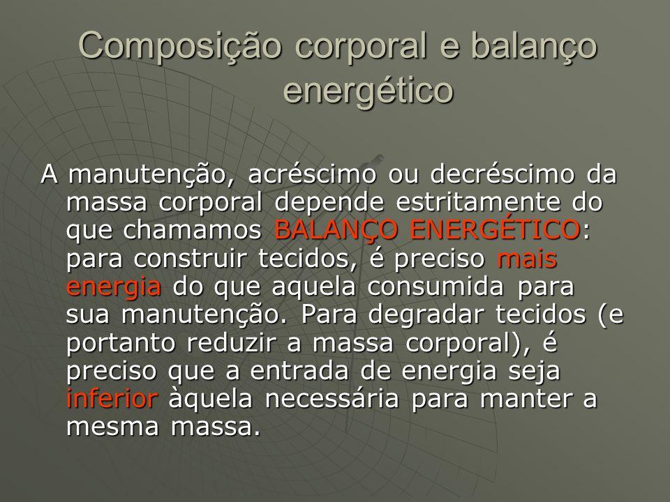 Composição corporal e balanço energético A manutenção, acréscimo ou decréscimo da massa corporal depende estritamente do que chamamos BALANÇO ENERGÉTI