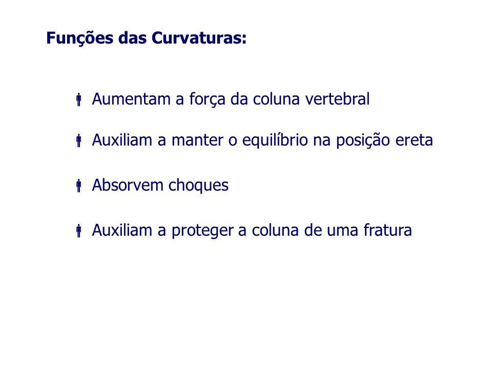 Funções das Curvaturas: Aumentam a força da coluna vertebral Auxiliam a manter o equilíbrio na posição ereta Absorvem choques Auxiliam a proteger a co