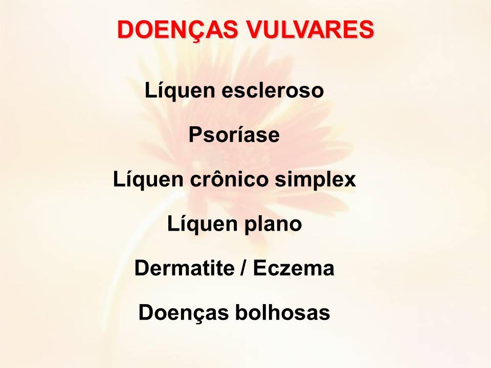 Líquen escleroso Psoríase Líquen crônico simplex Líquen plano Dermatite / Eczema Doenças bolhosas DOENÇAS VULVARES