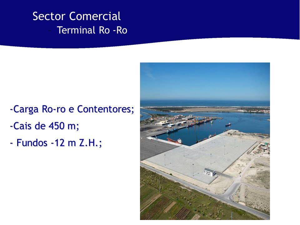 -Carga Ro-ro e Contentores; -Cais de 450 m; - Fundos -12 m Z.H.; Sector Comercial –Terminal Ro -Ro