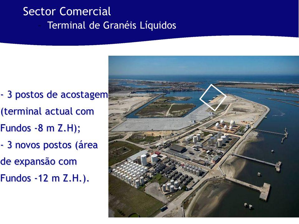 - 3 postos de acostagem (terminal actual com Fundos -8 m Z.H); - 3 novos postos (área de expansão com Fundos -12 m Z.H.).