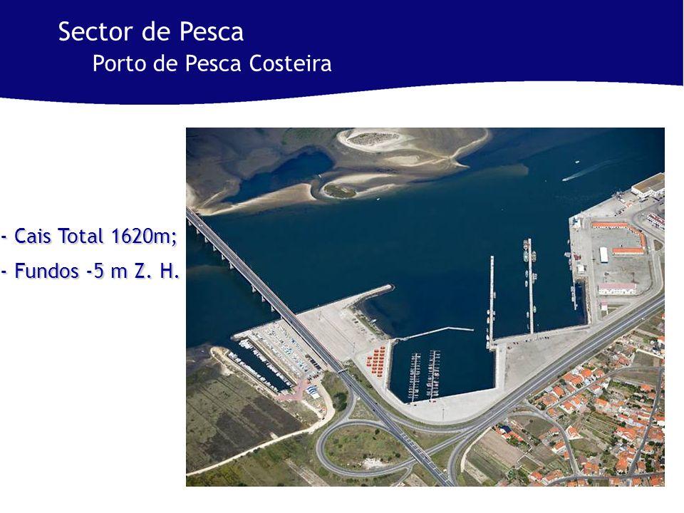- Cais Total 1620m; - Fundos -5 m Z. H. Sector de Pesca Porto de Pesca Costeira