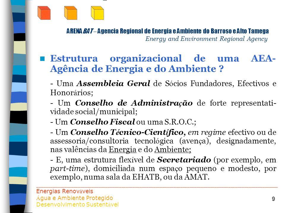 9 ARENABAT – Agencia Regional de Energia e Ambiente do Barroso e Alto Tamega Energy and Environment Regional Agency Estrutura organizacional de uma AE