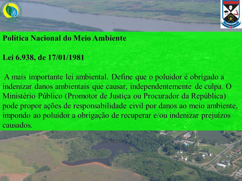 Política Nacional do Meio Ambiente Lei 6.938, de 17/01/1981 A mais importante lei ambiental. Define que o poluidor é obrigado a indenizar danos ambien