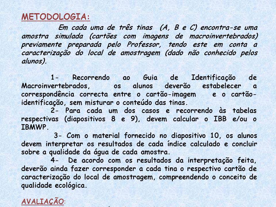 METODOLOGIA: Em cada uma de três tinas (A, B e C) encontra-se uma amostra simulada (cartões com imagens de macroinvertebrados) previamente preparada p