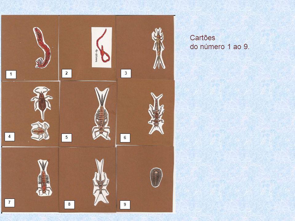 1 23 4 5 6 7 8 9 Cartões do número 1 ao 9.