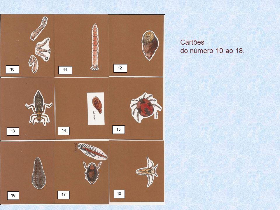 10 11 12 13 14 15 16 17 18 Cartões do número 10 ao 18.