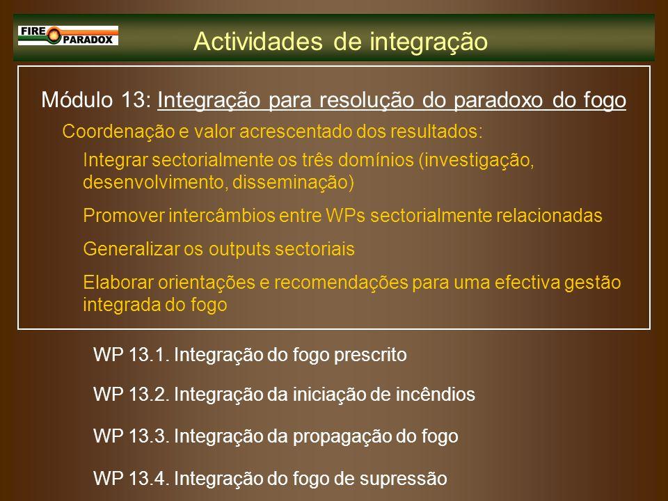 Módulo 13: Integração para resolução do paradoxo do fogo Integrar sectorialmente os três domínios (investigação, desenvolvimento, disseminação) Promov