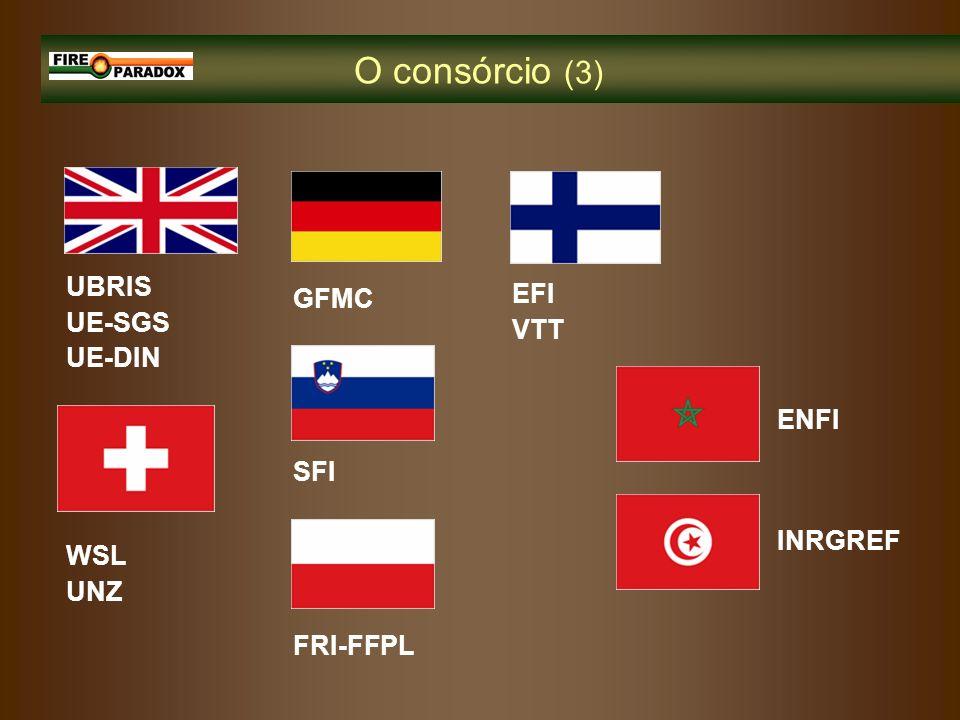 O consórcio (3) ENFI EFI VTT FRI-FFPL SFI INRGREF WSL UNZ UBRIS UE-SGS UE-DIN GFMC