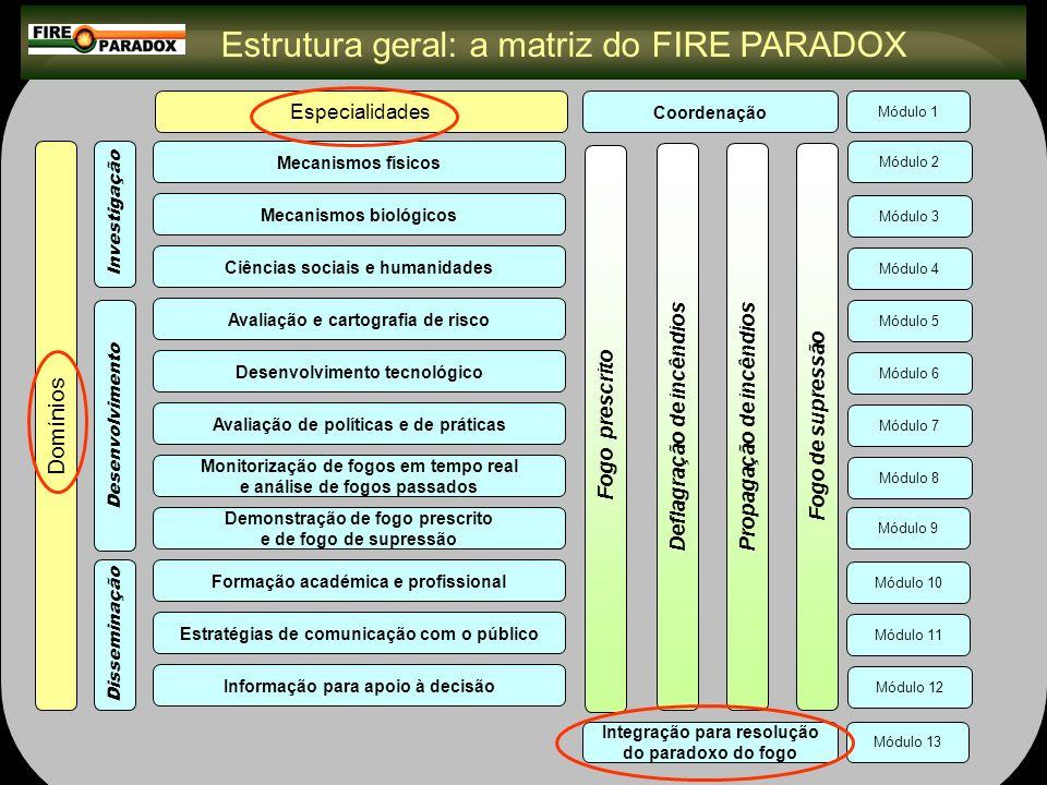 Domínio: Investigação (1) Módulo 2: Mecanismos físicos Avançar na compreensão e predição do comportamento e efeitos do fogo WP 2.1.