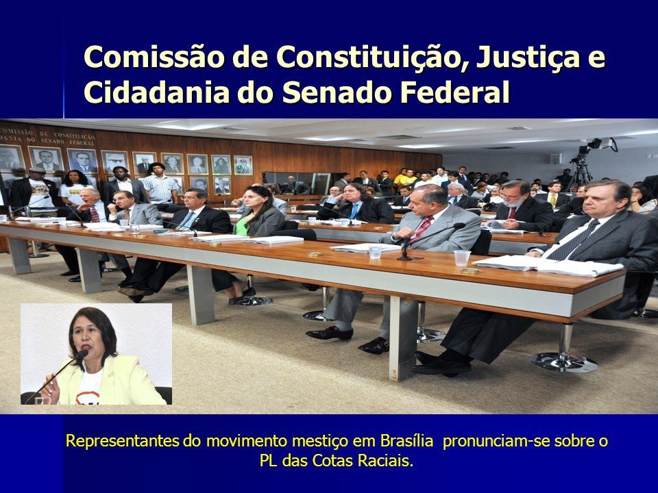 Representantes do movimento mestiço em Brasília pronunciam-se sobre o PL das Cotas Raciais. Comissão de Constituição, Justiça e Cidadania do Senado Fe