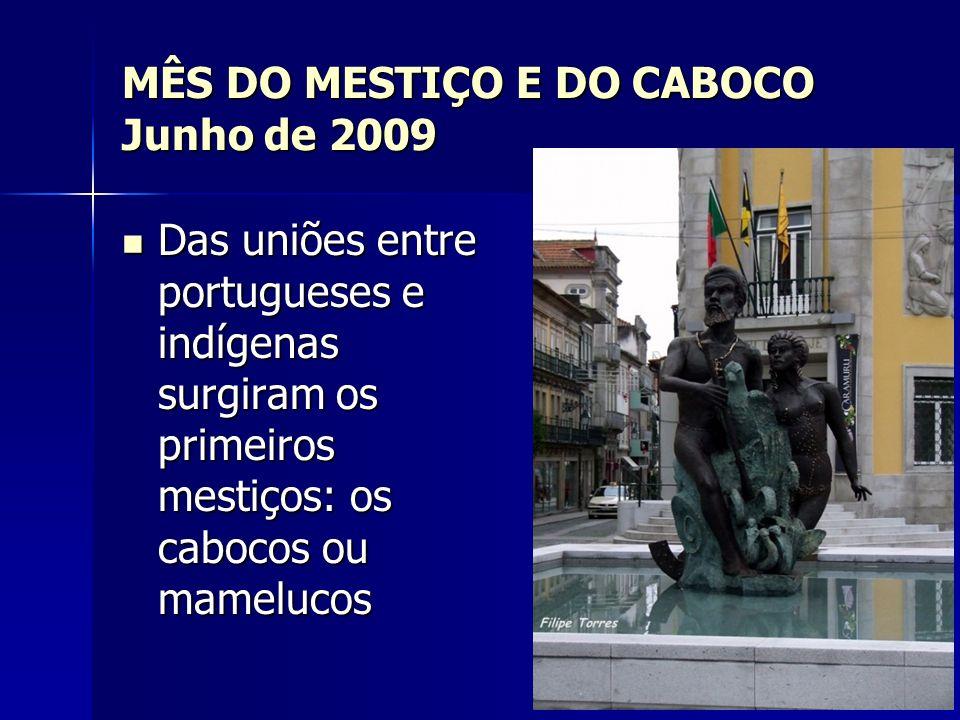 MÊS DO MESTIÇO E DO CABOCO Junho de 2009 Das uniões entre portugueses e indígenas surgiram os primeiros mestiços: os cabocos ou mamelucos Das uniões e