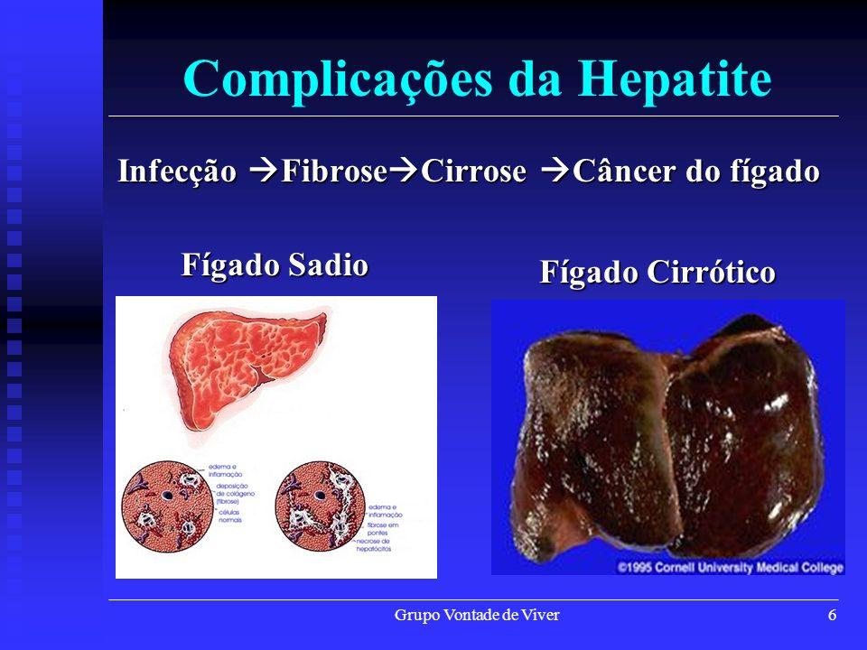 Grupo Vontade de Viver6 Complicações da Hepatite Infecção Fibrose Cirrose Câncer do fígado Fígado Sadio Fígado Cirrótico